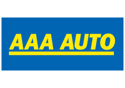 AMICOM Consulting & Strategy: Case Study AAA Auto
